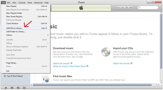 How To Transfer A Bundle of PDF Files To Your iDevice Using iTunes