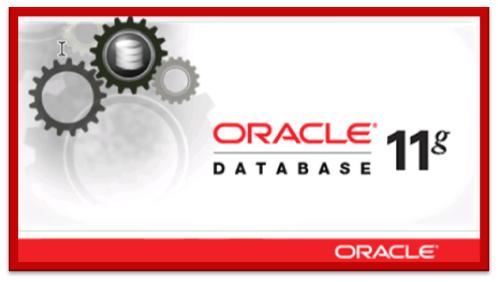 ocp 11g database administration and application developer